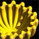 Modellazione geometrica: Ondulazione torica